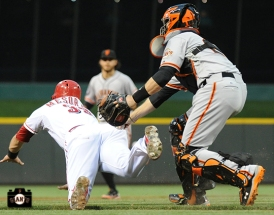july 3, 2013, sf giants, photo,