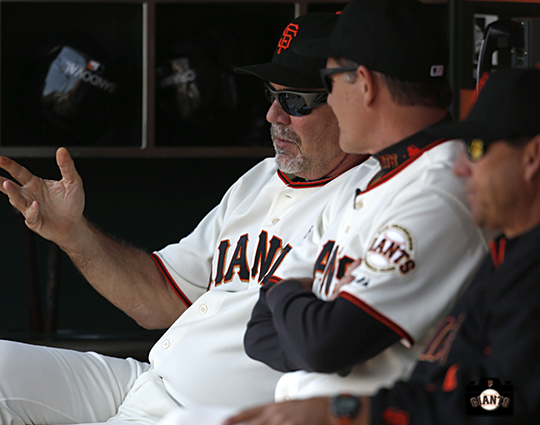 San Francisco Giants, S.F. Giants, photo, 2013, Bruce Bochy