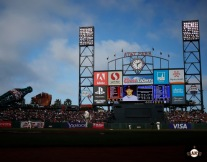 San Francisco Giants, S.F. Giants, photo, 2013, Madison Bumgarner