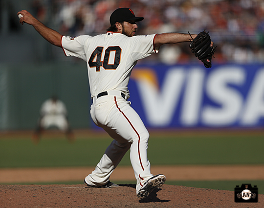 sf giants, photo, 2013, madison bumgarner