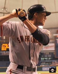 august 2, 2013, sf giants, tampa bay rays, photo,
