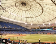 tropicana field, sf giants, photo, august 3, 2013, fans