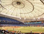 tropicana field, sf giants, photo, august 3, 2013, fans