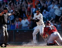 San Francisco Giants, S.F. Giants, photo, 2013, Ehire Adrianza