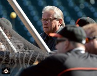 San Francisco Giants, S.F. Giants, photo, 2013, Duane Kuiper