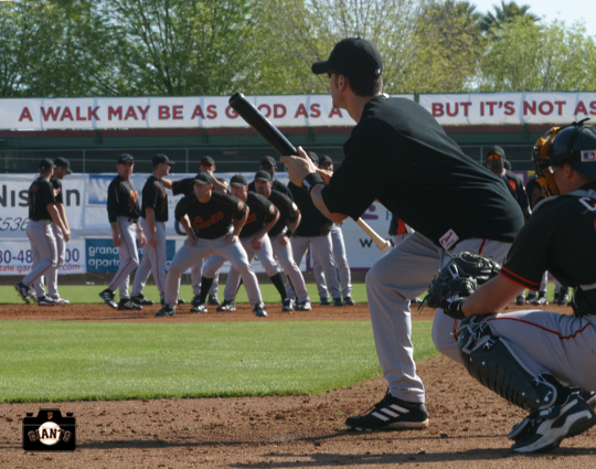 sf giants, spring training, photo