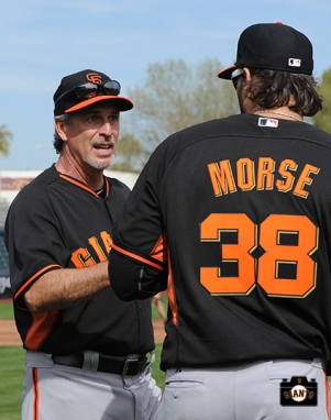 2014, spring training, sf giants, photo, mike morse