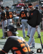 2014 sf giants, spring training, photo