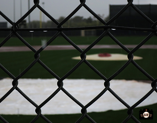 2014, sf giants, minor league complex, indian school park, spring training