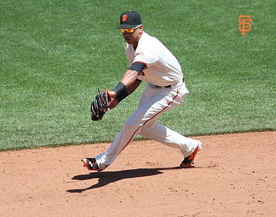 june 12, 2014, sf giants, photo
