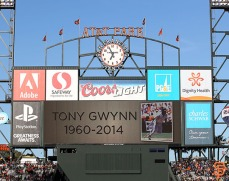 San Francisco Giants, S.F. Giants, photo, 2014, Tony Gwynn,