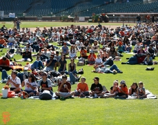 Toy Story screening on the field
