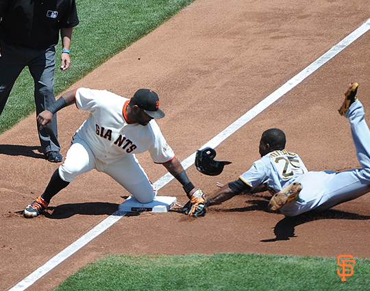 2014 sf giants, photo