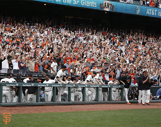 San Francisco Giants, S.F. Giants, photo, 2014, Team, Fans