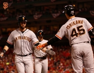 nlcs game 2, october 12, 2014, sf giants, photo