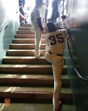 San Francisco Giants, S.F. Giants, photo, 2014, NLCS, Brandon Crawford