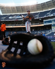 world series, photo, san francisco giants